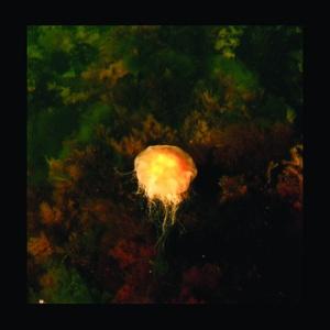 archipelago matters cd