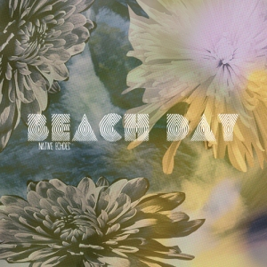 Beach-Day-Native-Echoes