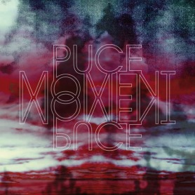 dsr073lp puce moment 2lp