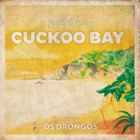 os drongos cuckoo bay