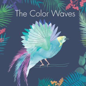the color waves