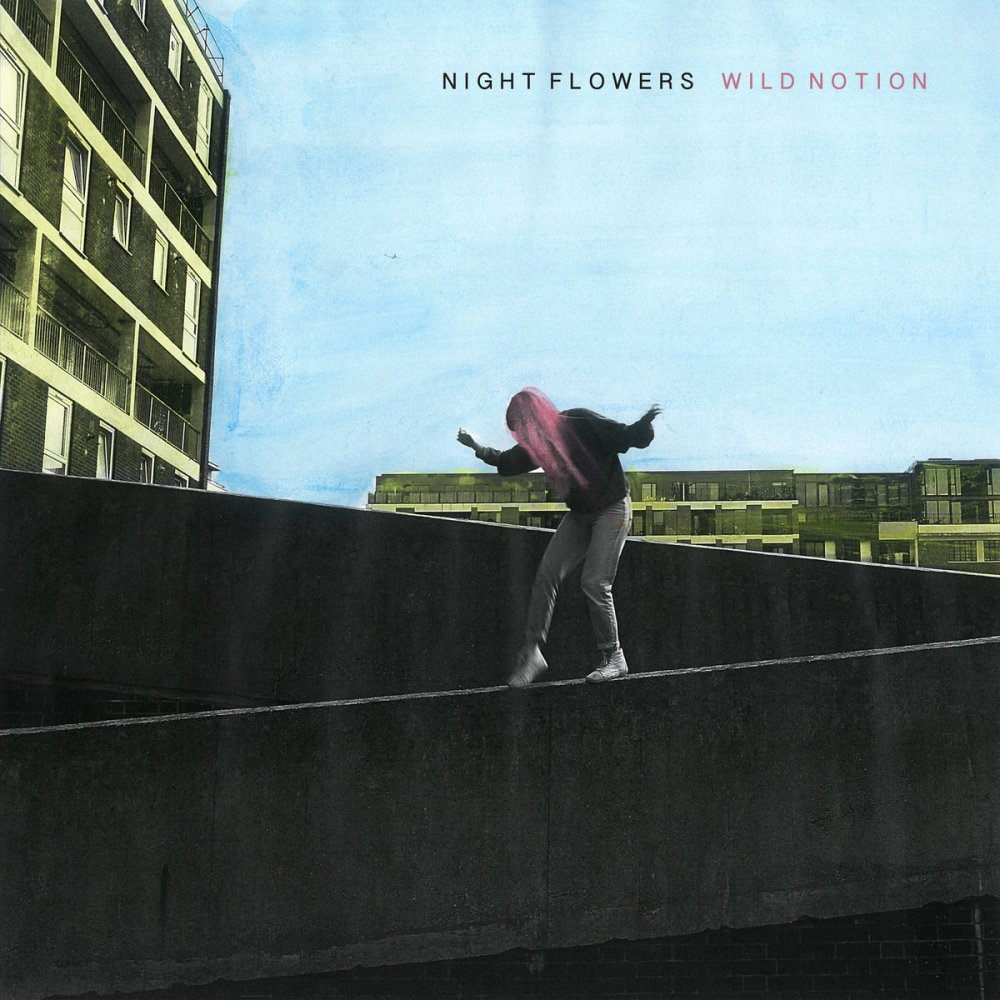 night flowers lp cover